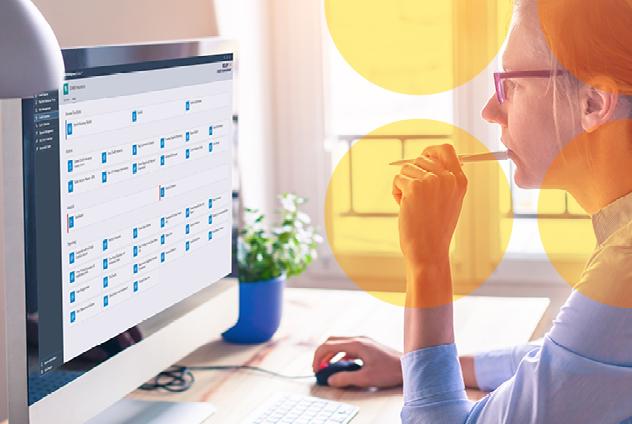 Credit Insurance SAP
